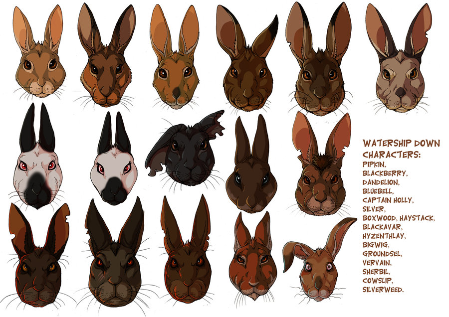 watership_down_rabbits_by_fisi-d4o44xe
