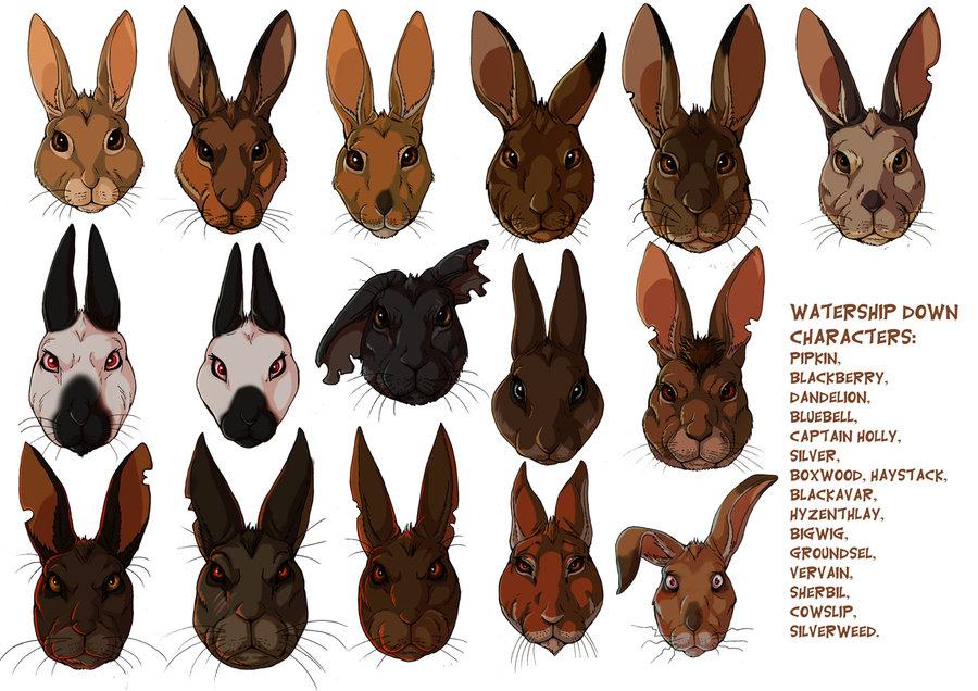 watership_down_rabbits_by_fisi-d4o44xe